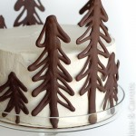 Chocolate Raspberry Forest Cake-9869