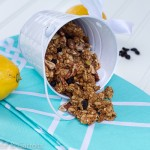 Lemon Blueberry Granola-0565
