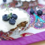 No Bake Blueberry Cheesecakes-3504