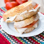 Grilled Turkey Panini-2801